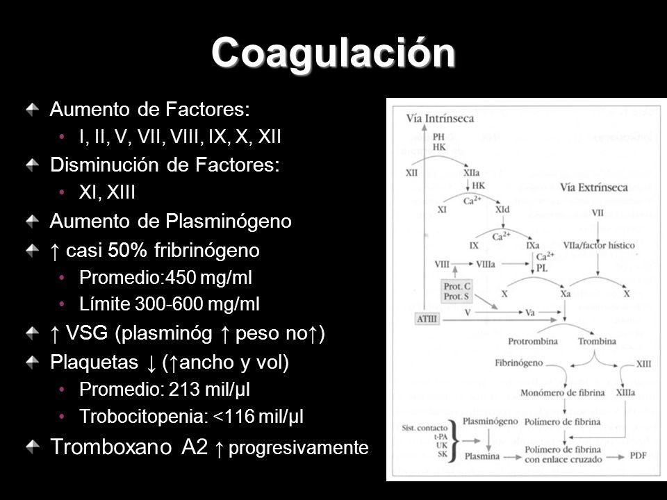 Coagulación Aumento de Factores: I, II, V, VII, VIII, IX, X, XII Disminución de Factores: XI, XIII Aumento de Plasminógeno casi 50% fribrinógeno Prome