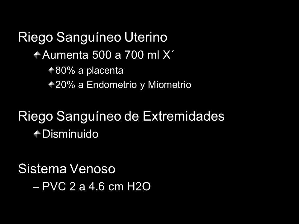 Riego Sanguíneo Uterino Aumenta 500 a 700 ml X´ 80% a placenta 20% a Endometrio y Miometrio Riego Sanguíneo de Extremidades Disminuido Sistema Venoso