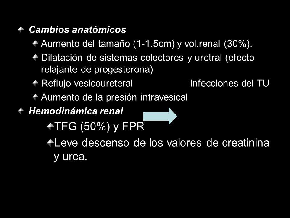Cambios anatómicos Aumento del tamaño (1-1.5cm) y vol.renal (30%). Dilatación de sistemas colectores y uretral (efecto relajante de progesterona) Refl