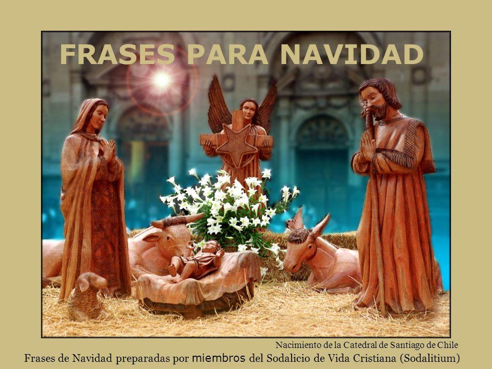 FRASES PARA NAVIDAD Frases de Navidad preparadas por miembros del Sodalicio de Vida Cristiana (Sodalitium) Nacimiento de la Catedral de Santiago de Ch