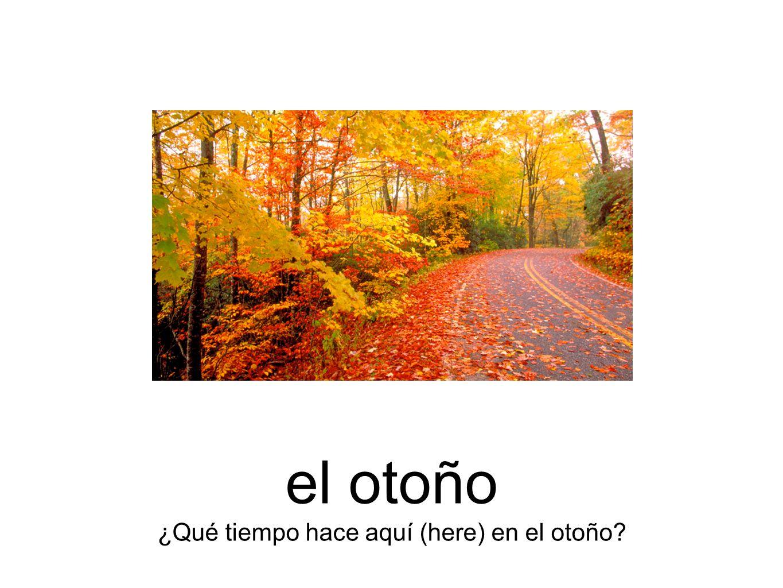 el otoño ¿Qué tiempo hace aquí (here) en el otoño?
