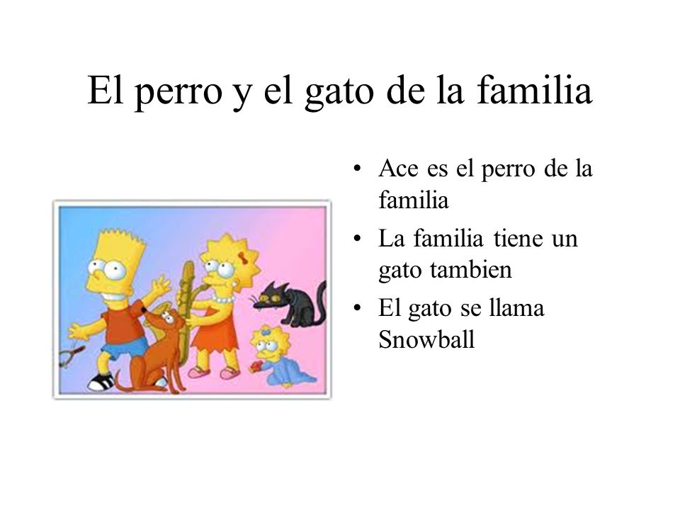 El perro y el gato de la familia Ace es el perro de la familia La familia tiene un gato tambien El gato se llama Snowball
