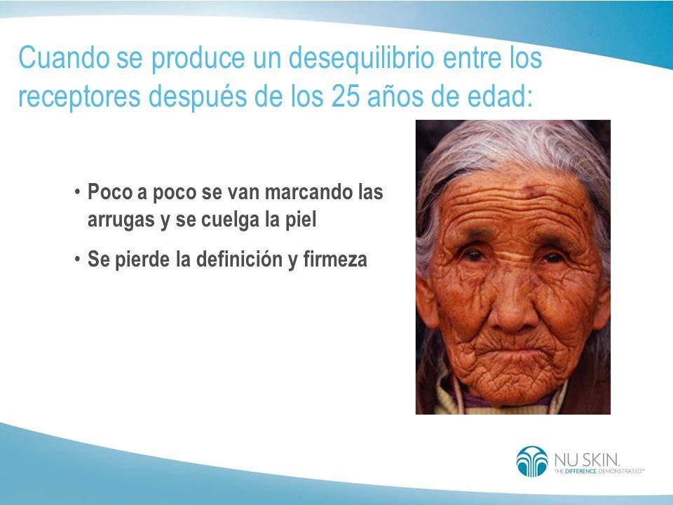 A medida que envejecemos... Los niveles de elastina disminuyen La piel pierde su definición y firmeza La piel se vuelve flácida
