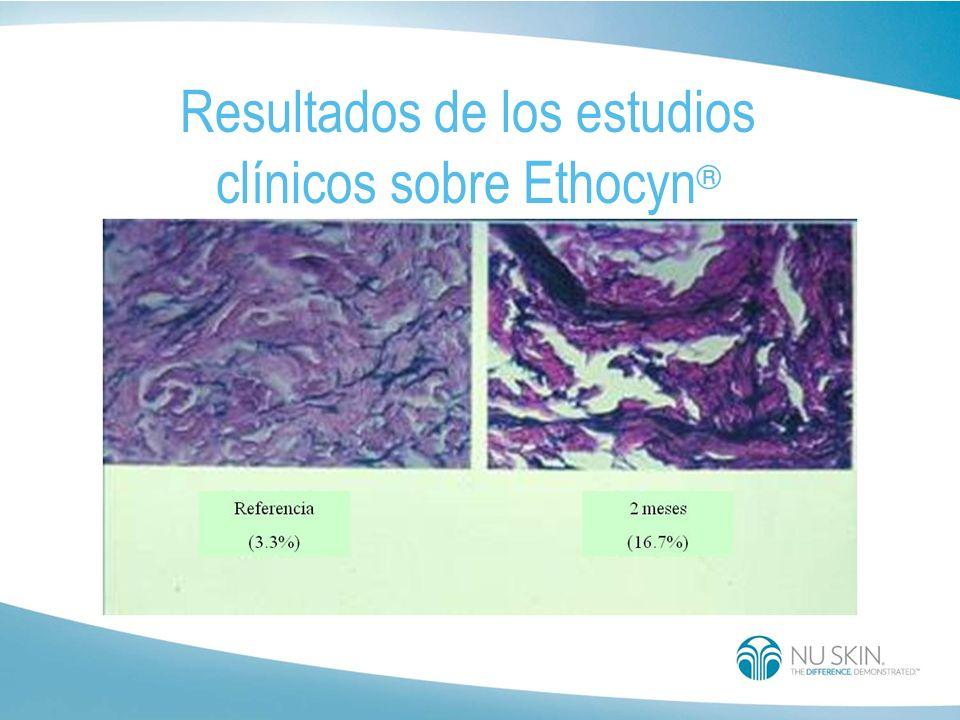 Estudio clínico en la U.C.L.A.: Se realizaron evaluaciones cuantitativas precisas del contenido de fibras de elastina en la piel de varias personas an