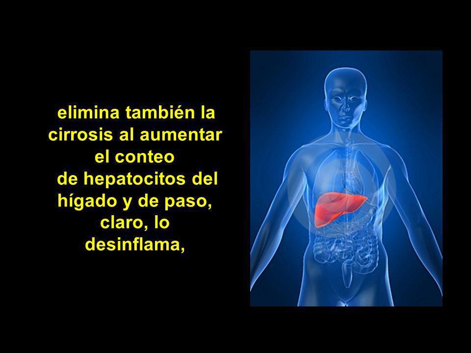 lo que convierte al alpiste en un regenerador pancreático inmenso, es decir acaba con la diabetes en unas pocas semanas,