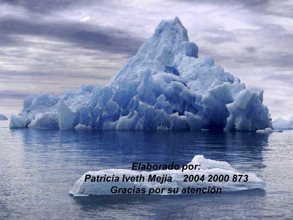 Elaborado por: Patricia Iveth Mejia 2004 2000 873 Gracias por su atención