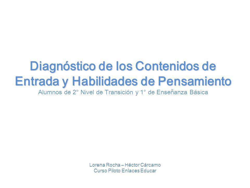 Diagnóstico de los Contenidos de Entrada y Habilidades de Pensamiento Alumnos de 2° Nivel de Transición y 1° de Enseñanza Básica Lorena Rocha – Héctor