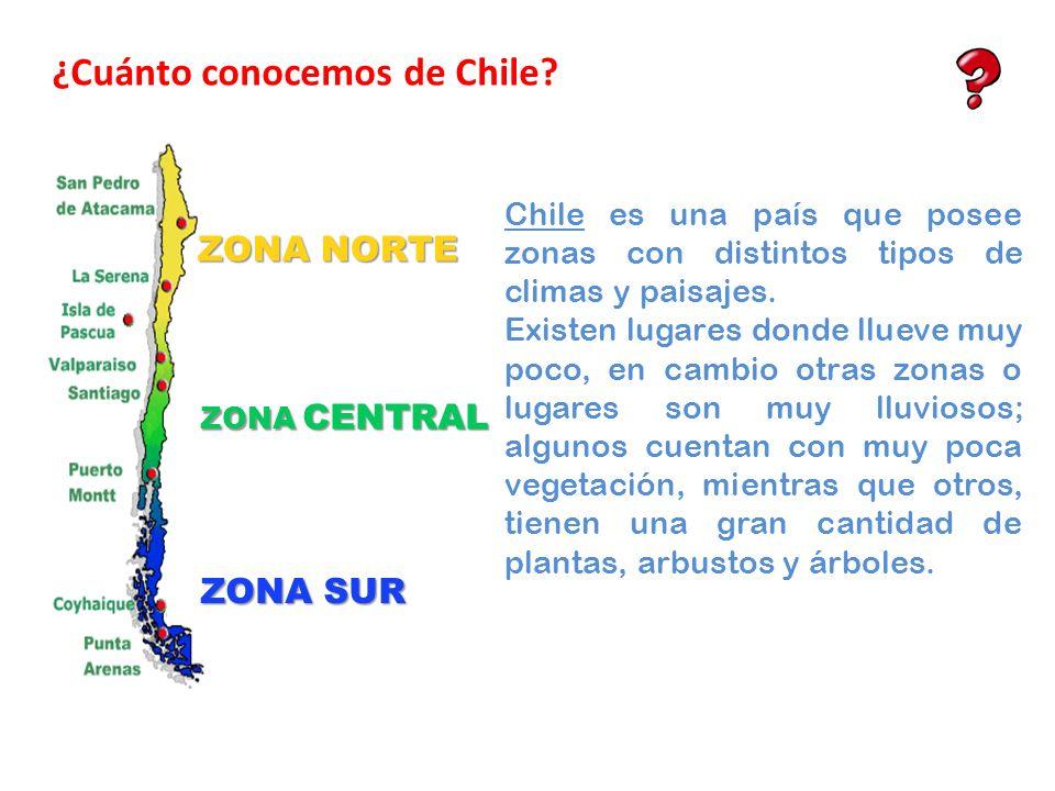 ZONA NORTE ZONA CENTRAL ZONA SUR Chile es una país que posee zonas con distintos tipos de climas y paisajes. Existen lugares donde llueve muy poco, en