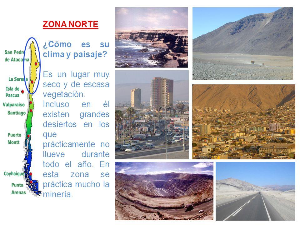 ZONA NORTE ¿Cómo es su clima y paisaje? Es un lugar muy seco y de escasa vegetación. Incluso en él existen grandes desiertos en los que prácticamente