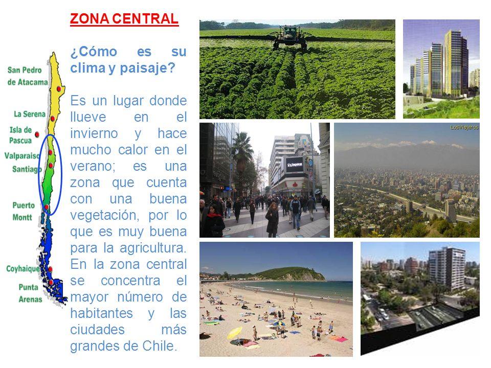 ZONA SUR ¿Cómo es su clima y paisaje.