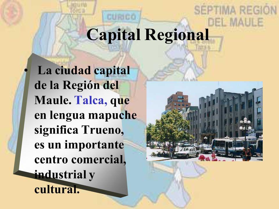 Capital Regional La ciudad capital de la Región del Maule. Talca, que en lengua mapuche significa Trueno, es un importante centro comercial, industria