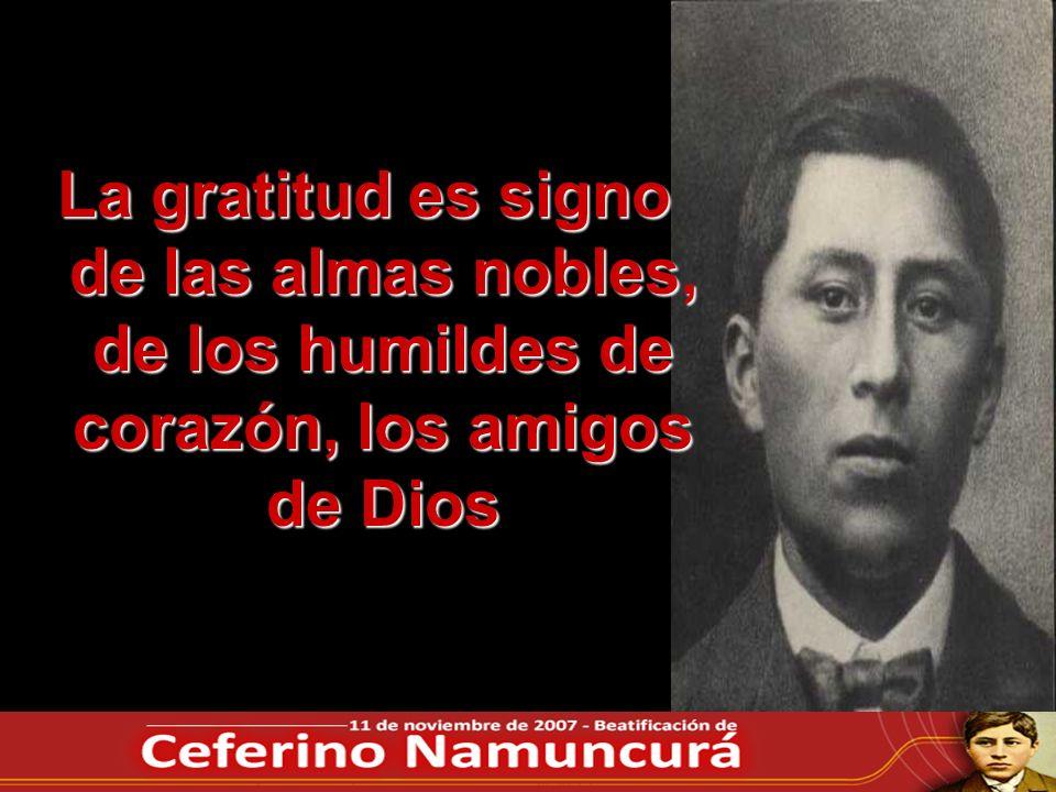 La gratitud es signo de las almas nobles, de los humildes de corazón, los amigos de Dios
