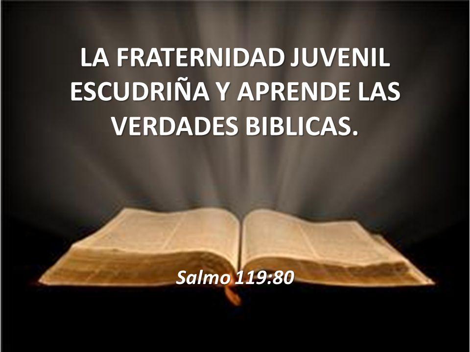 LA FRATERNIDAD JUVENIL ESCUDRIÑA Y APRENDE LAS VERDADES BIBLICAS. Salmo 119:80
