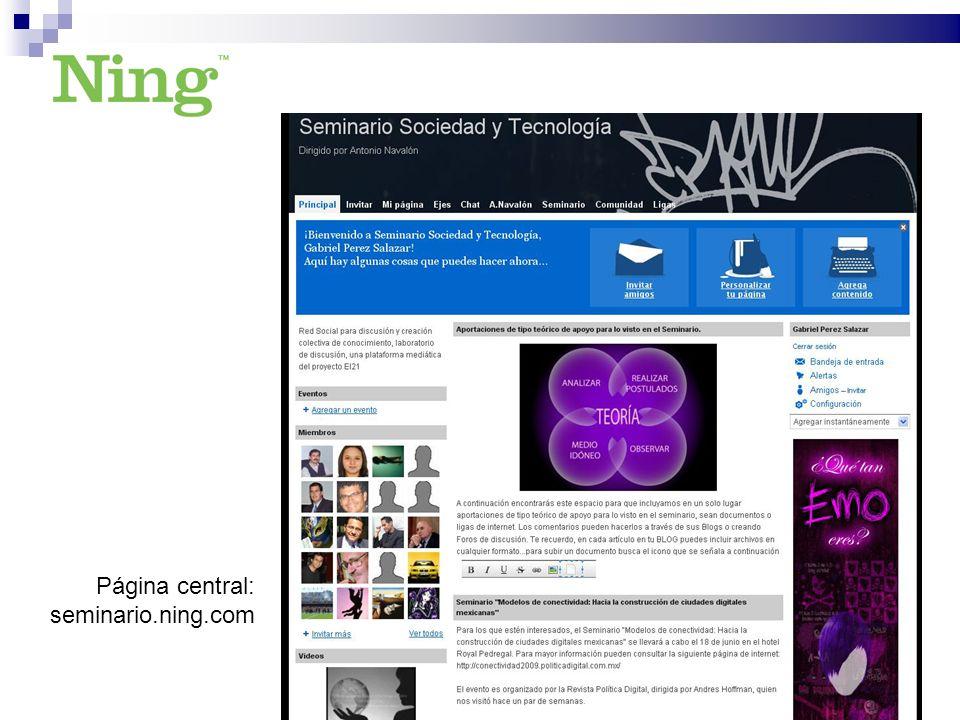 Página central: seminario.ning.com