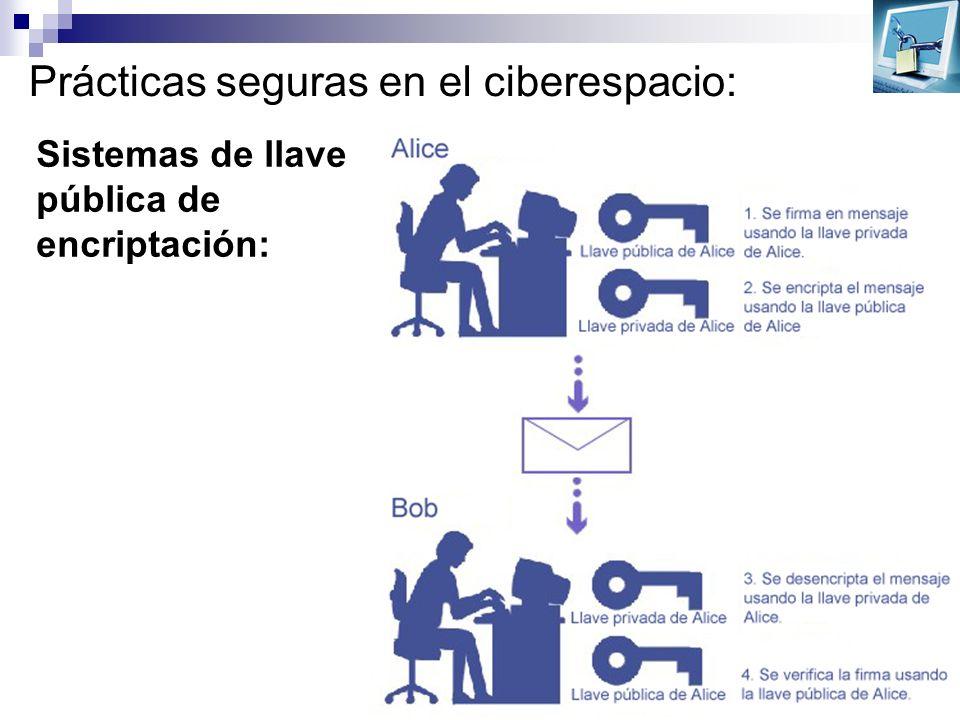 Prácticas seguras en el ciberespacio: Sistemas de llave pública de encriptación: