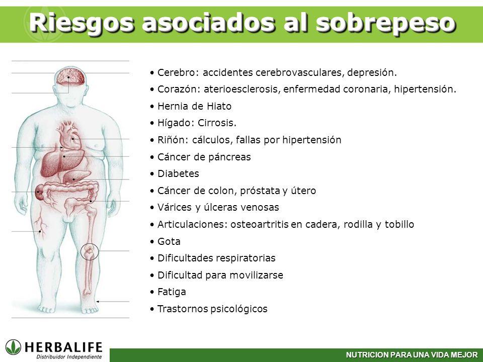 NUTRICION PARA UNA VIDA MEJOR Riesgos asociados al sobrepeso Cerebro: accidentes cerebrovasculares, depresión. Corazón: aterioesclerosis, enfermedad c