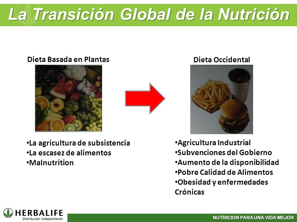 NUTRICION PARA UNA VIDA MEJOR La Transición Global de la Nutrición Dieta Basada en Plantas Dieta Occidental La agricultura de subsistencia La escasez