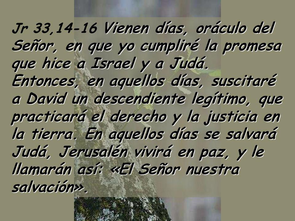 Ciclo C 1 Domingo de Adviento 29 de noviembre 2009 Música: Kyrie de navidad sXII