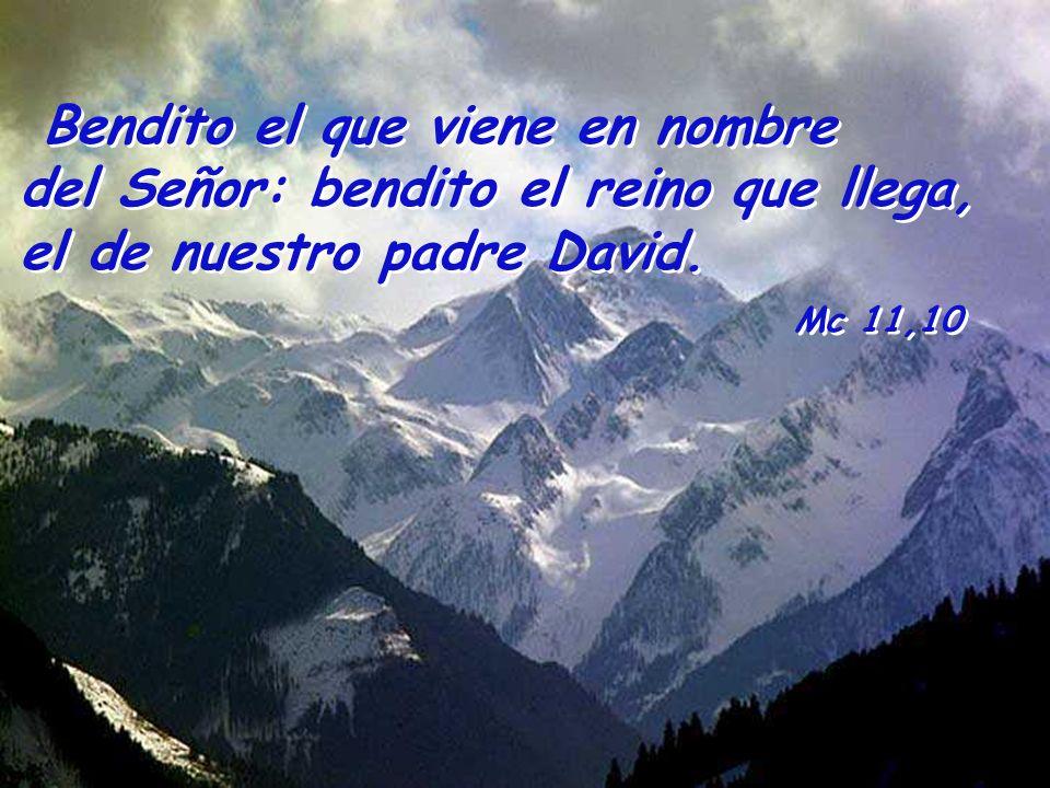 Bendito el que viene en nombre del Señor: bendito el reino que llega, el de nuestro padre David.