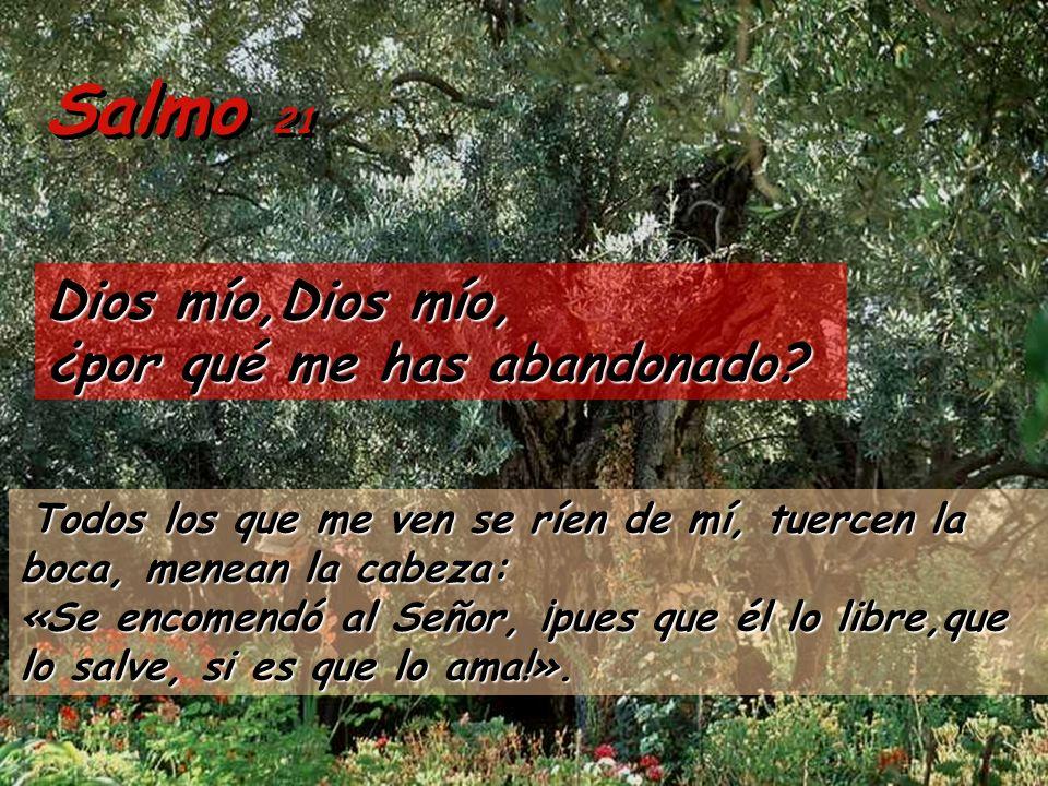 Salmo 21 Dios mío,Dios mío, ¿por qué me has abandonado.