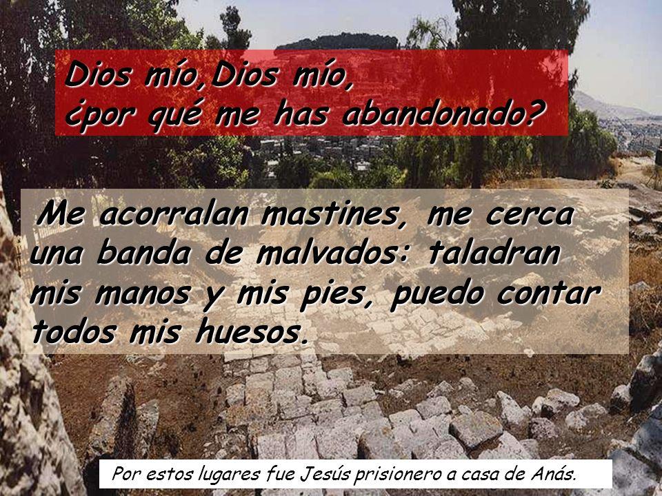 Por estos lugares fue Jesús prisionero a casa de Anás.