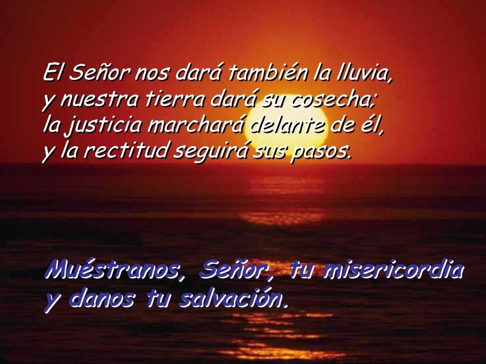 Muéstranos, Señor, tu misericordia y danos tu salvación. Muéstranos, Señor, tu misericordia y danos tu salvación. El amor y la fidelidad se encuentran