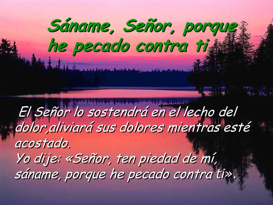 Salmo 40 Sáname, Señor, porque he pecado contra ti. Sáname, Señor, porque he pecado contra ti. Dichoso el que socorre al desvalido: en los días advers