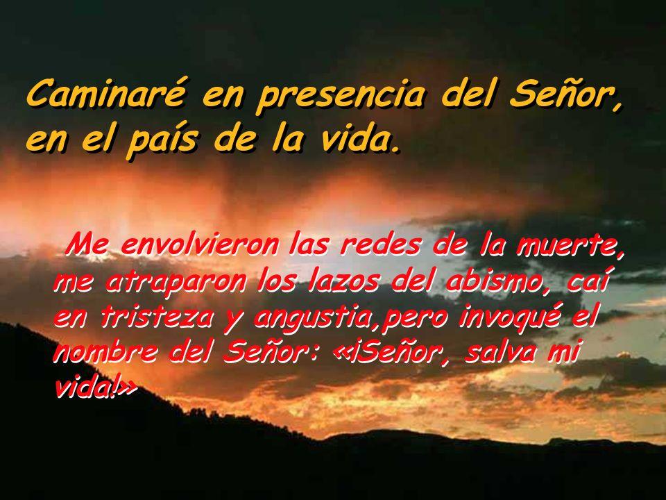 Salmo 114 Caminaré en presencia del Señor, en el país de la vida. Amo al Señor porque escucha mi voz suplicante,porque inclina su oído hacia mí cuando