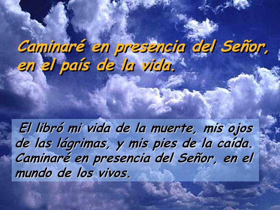 Caminaré en presencia del Señor, en el país de la vida. El Señor es benigno y justo, nuestro Dios es todo ternura. El Señor guarda a los sencillos: es