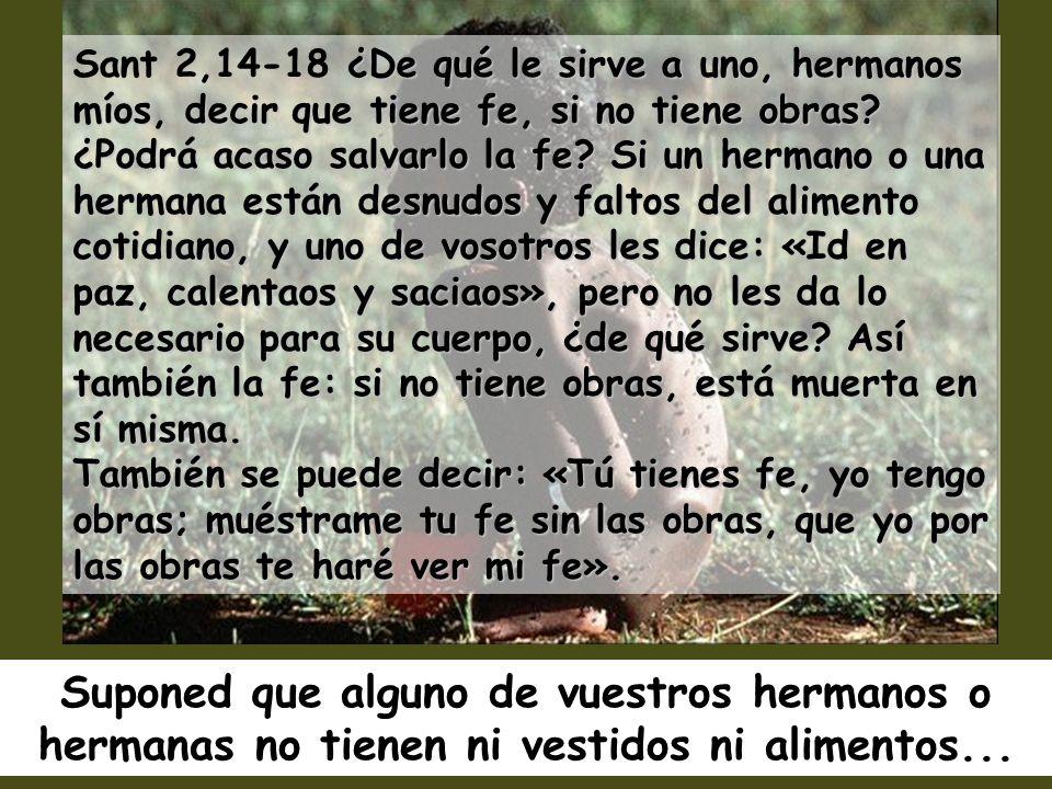 Caminaré en presencia del Señor, en el país de la vida. El libró mi vida de la muerte, mis ojos de las lágrimas, y mis pies de la caída. Caminaré en p
