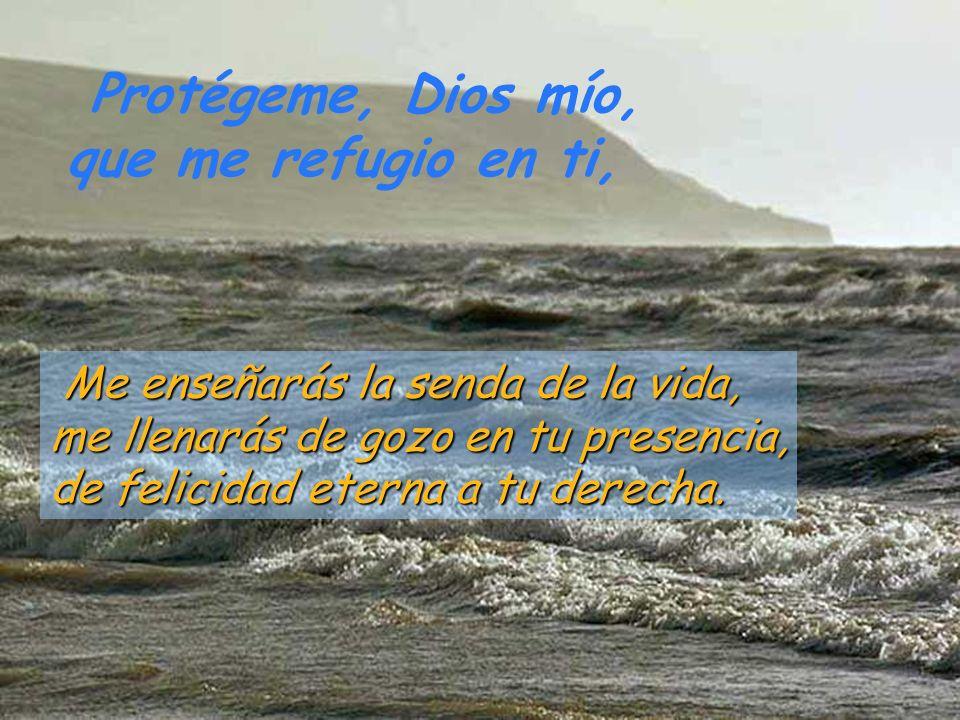 Protégeme, Dios mío, que me refugio en ti. Por eso se me alegra el corazón, exultan mis entrañas,y todo mi ser descansa tranquilo; porque no me abando