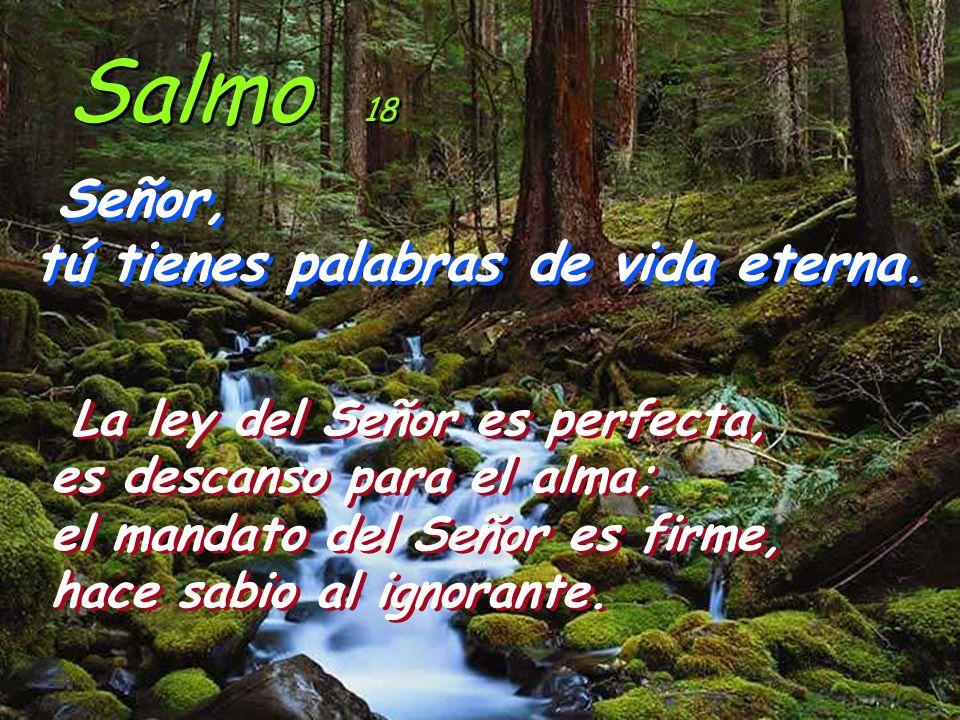 Salmo 18 Señor, tú tienes palabras de vida eterna.