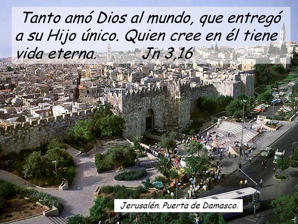 Jerusalén.Puerta de Damasco. Tanto amó Dios al mundo, que entregó a su Hijo único.