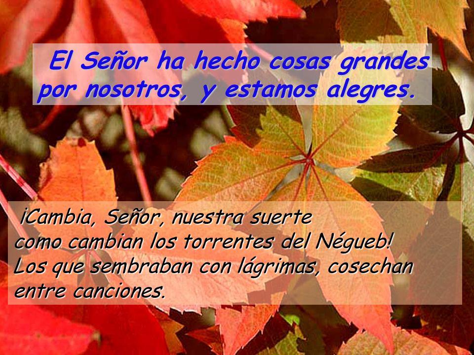 ¡Cambia, Señor, nuestra suerte como cambian los torrentes del Négueb.