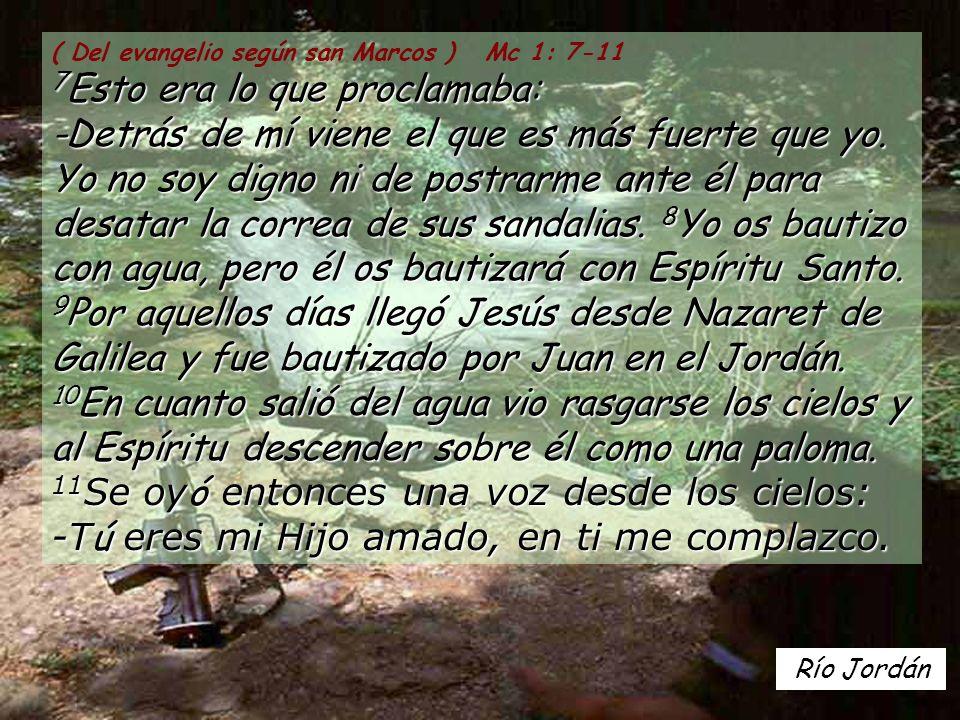 Río Jordán 7 Esto era lo que proclamaba: -Detrás de mí viene el que es más fuerte que yo.