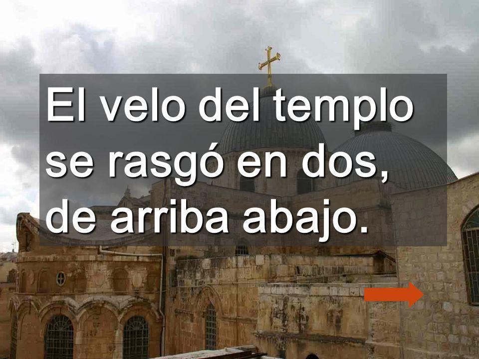 Pagando tributo al cuerpo de carne, daréis el Último suspiro El día de mi agonía, Señor, de mi no te apartes...