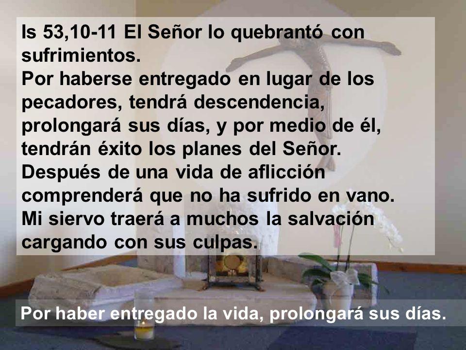 Is 53,10-11 El Señor lo quebrantó con sufrimientos.