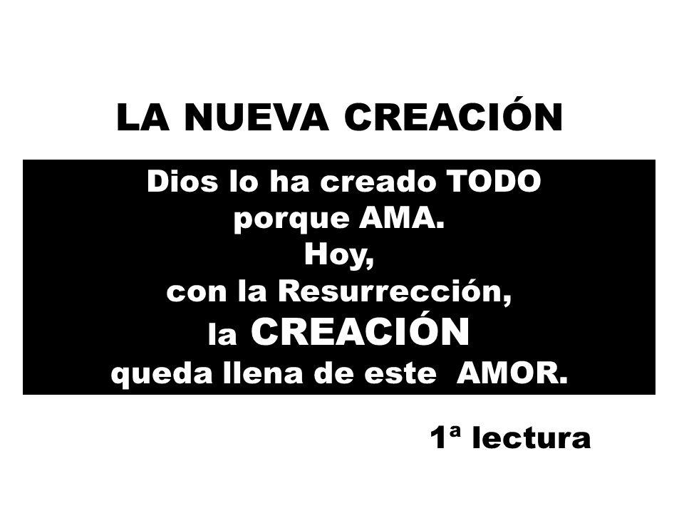 Dios lo ha creado TODO porque AMA.Hoy, con la Resurrección, la CREACIÓN queda llena de este AMOR.