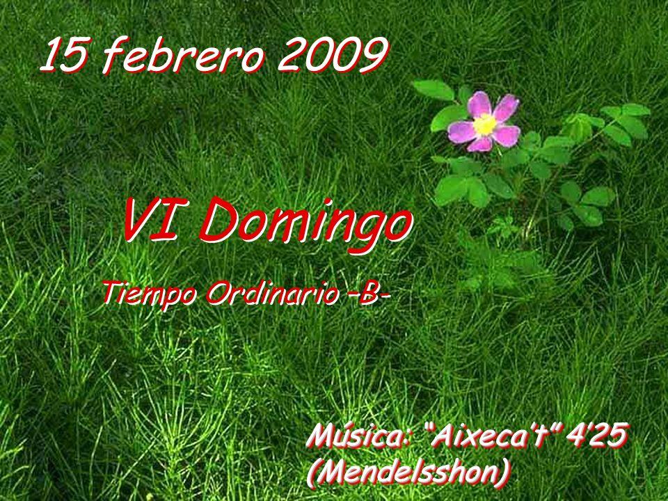 15 febrero 2009 VI Domingo Tiempo Ordinario –B- VI Domingo Tiempo Ordinario –B- Música: Aixecat 425 (Mendelsshon)