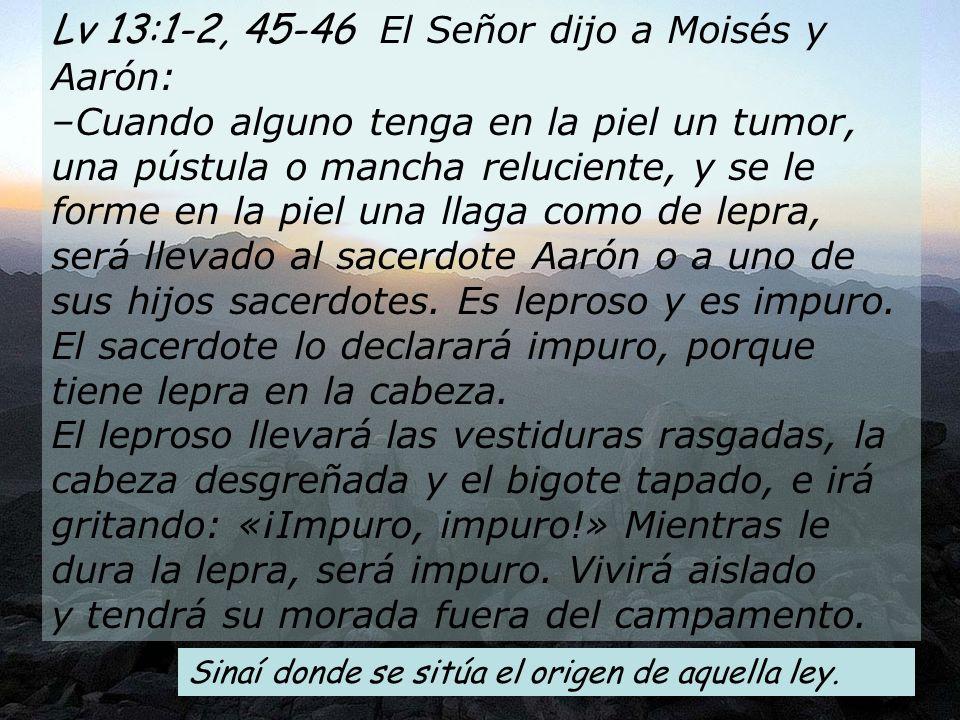Lv 13:1-2, 45-46 El Señor dijo a Moisés y Aarón: –Cuando alguno tenga en la piel un tumor, una pústula o mancha reluciente, y se le forme en la piel una llaga como de lepra, será llevado al sacerdote Aarón o a uno de sus hijos sacerdotes.