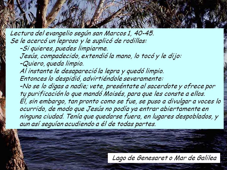 Lago de Genesaret o Mar de Galilea Lectura del evangelio según san Marcos 1, 40-45.
