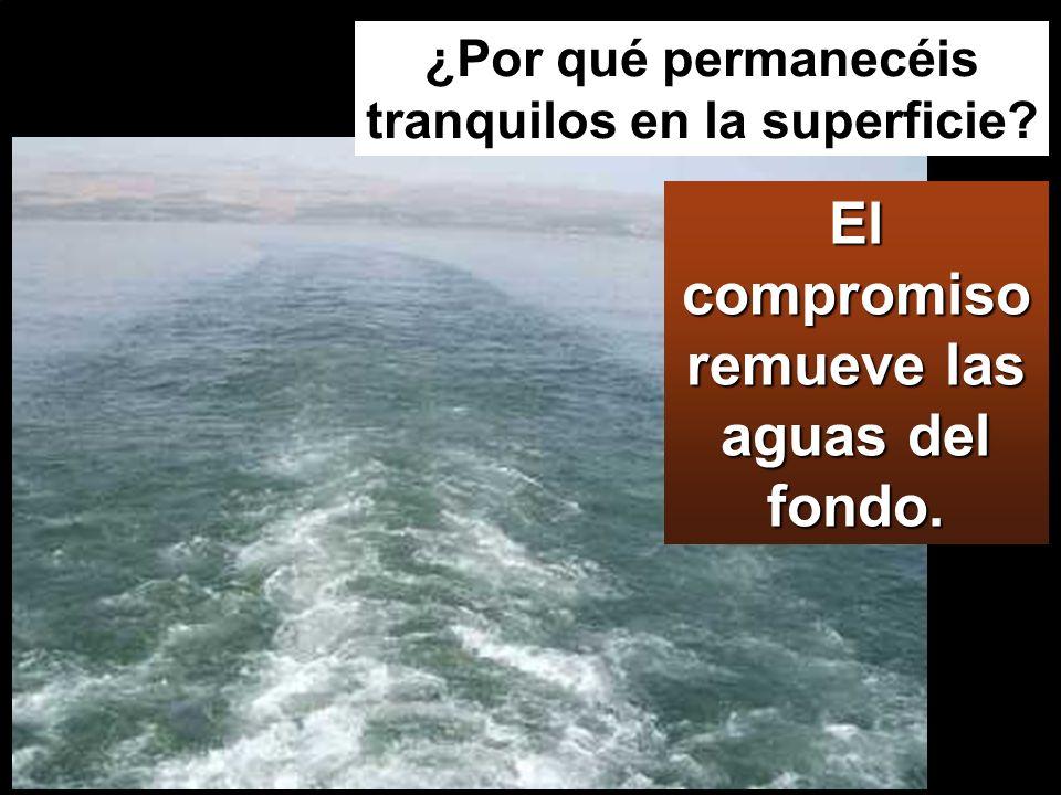 El compromiso remueve las aguas del fondo. ¿Por qué permanecéis tranquilos en la superficie?