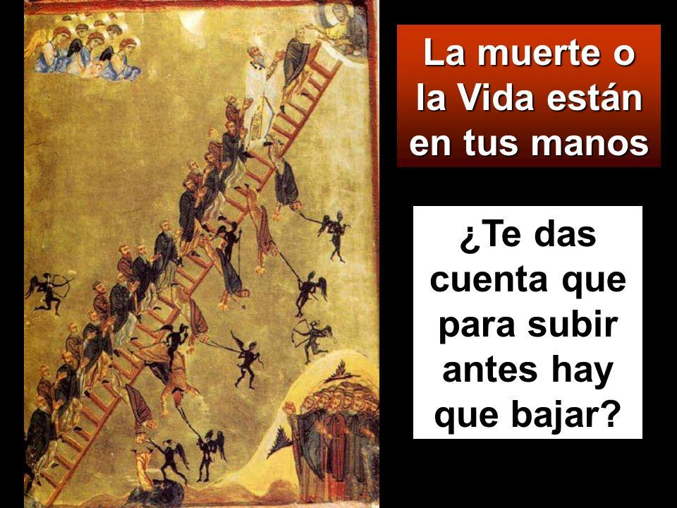 Y éstos irán al castigo eterno, y los justos a la vida eterna.