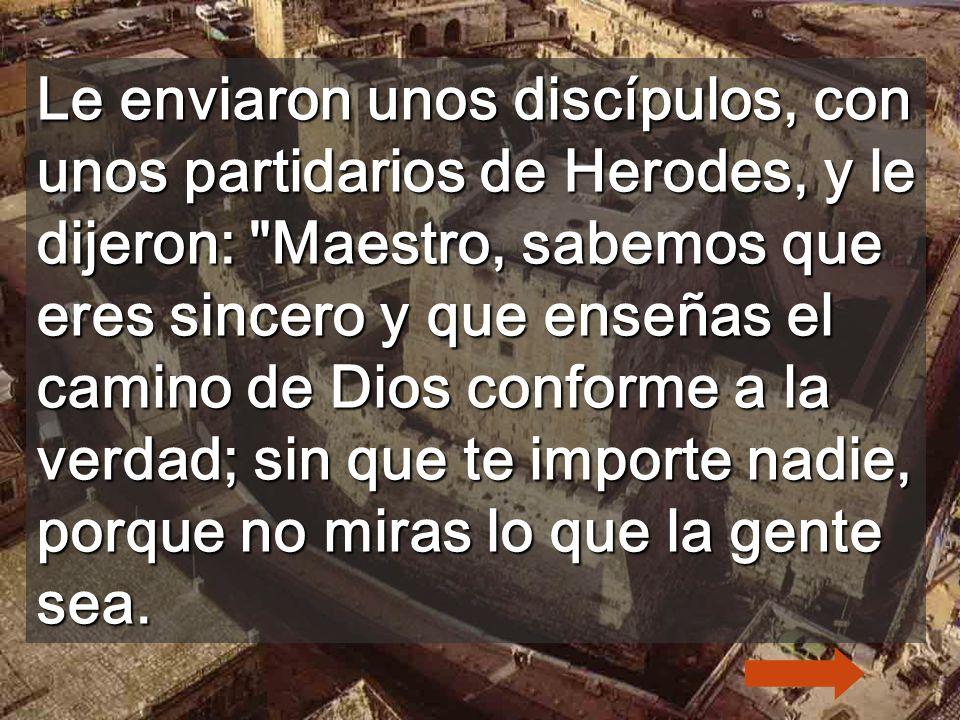 Le enviaron unos discípulos, con unos partidarios de Herodes, y le dijeron: Maestro, sabemos que eres sincero y que enseñas el camino de Dios conforme a la verdad; sin que te importe nadie, porque no miras lo que la gente sea.