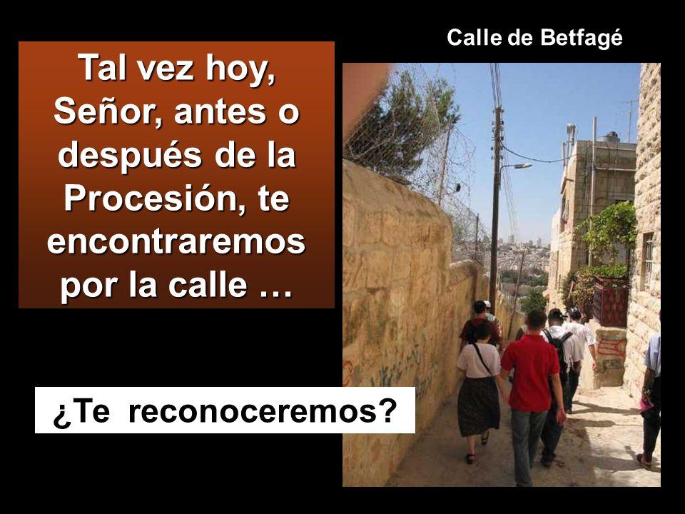 Mc 11:1-10 Cuando se acercaban a Jerusalén, por Betfagé y Betania, cerca del monte de los Olivos, En medio, camino que entra en Jerusalén desde Betfagé
