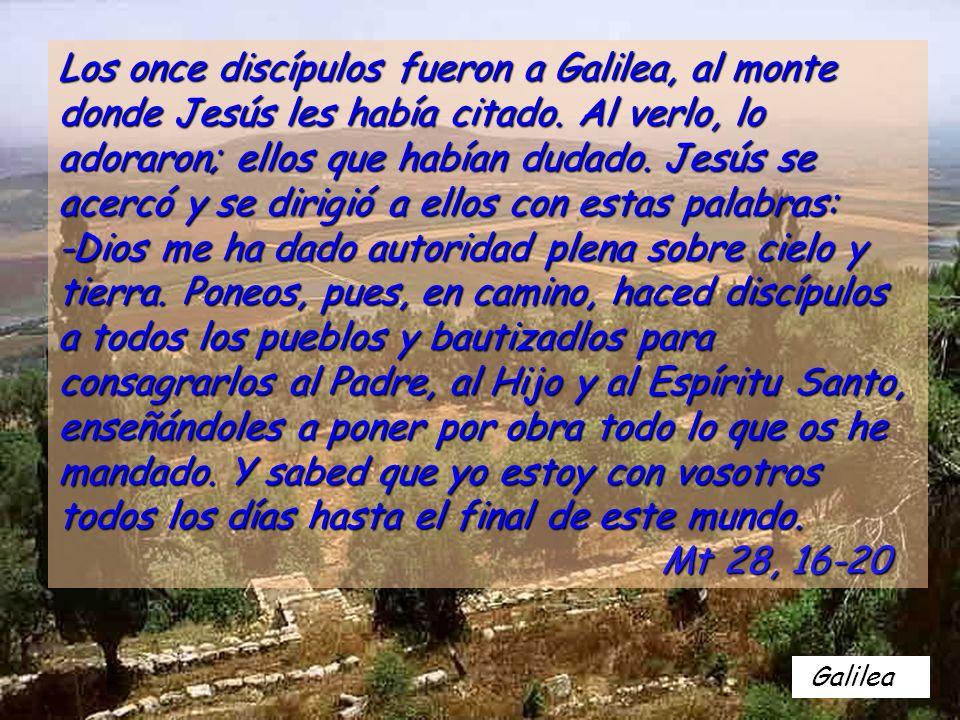Galilea Los once discípulos fueron a Galilea, al monte donde Jesús les había citado.