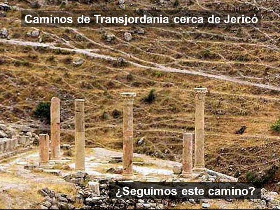 Caminos de Transjordania cerca de Jericó ¿Seguimos este camino?