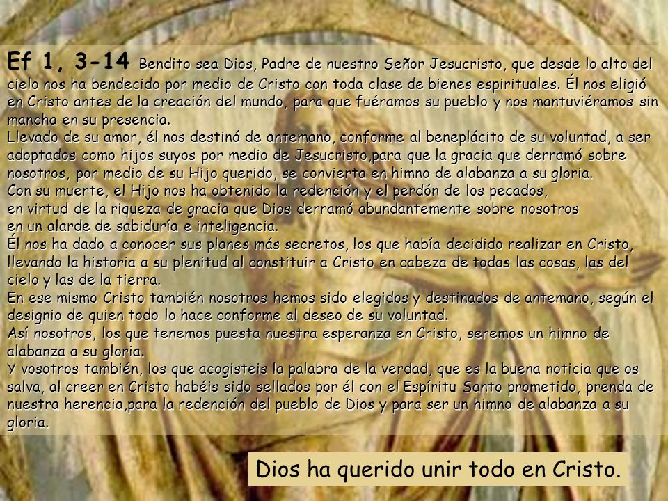 Muéstranos, Señor, tu misericordia y danos tu salvación. El Señor nos dará también la lluvia, y nuestra tierra dará su cosecha; la justicia marchará d