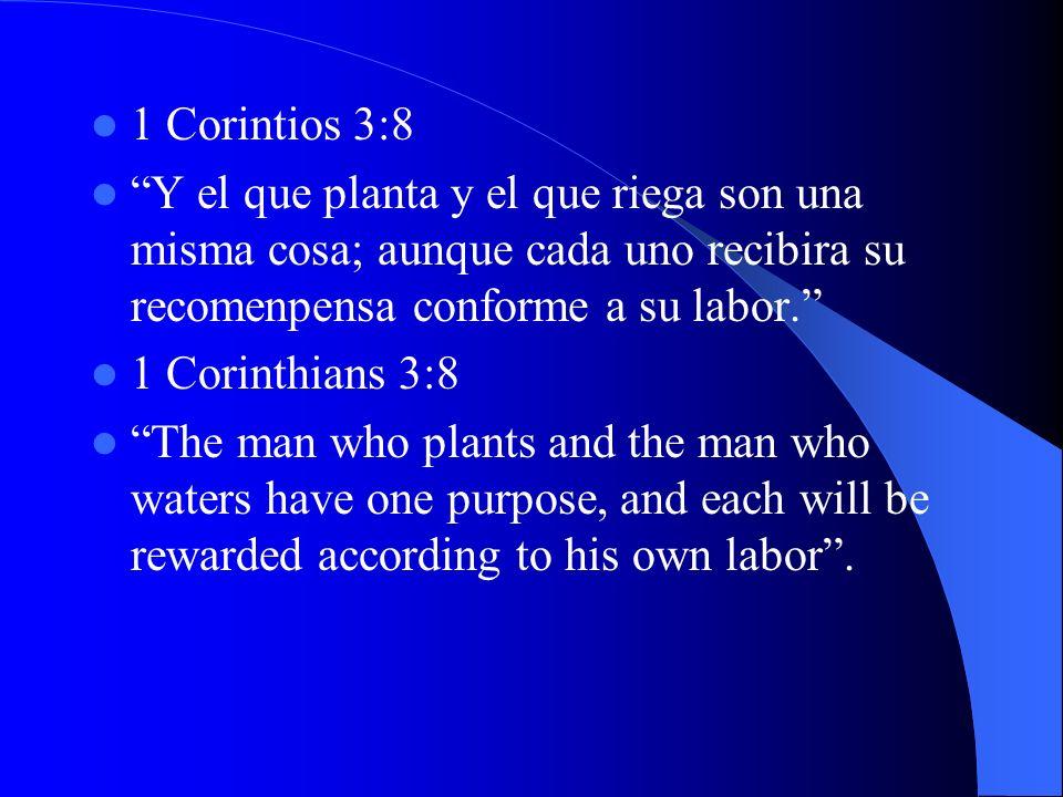 1 Corintios 3:8 Y el que planta y el que riega son una misma cosa; aunque cada uno recibira su recomenpensa conforme a su labor. 1 Corinthians 3:8 The