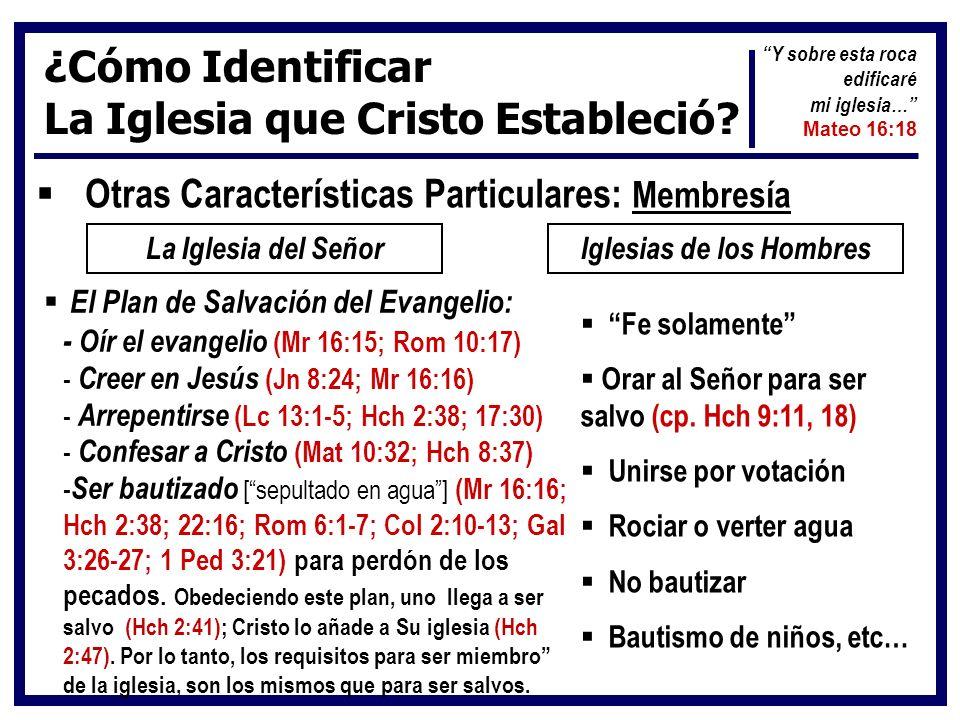 ¿Cómo Identificar La Iglesia que Cristo Estableció? Otras Características Particulares: Membresía La Iglesia del SeñorIglesias de los Hombres El Plan